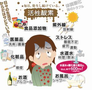 美容・健康・老化対策の基本は抗酸化物質を摂取して活性酸素の除去!